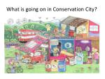 what is going on in conservation city
