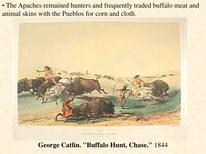 The Apaches remained hunters and frequently traded buffalo meat and animal skins with the Pueblos for corn and cloth.