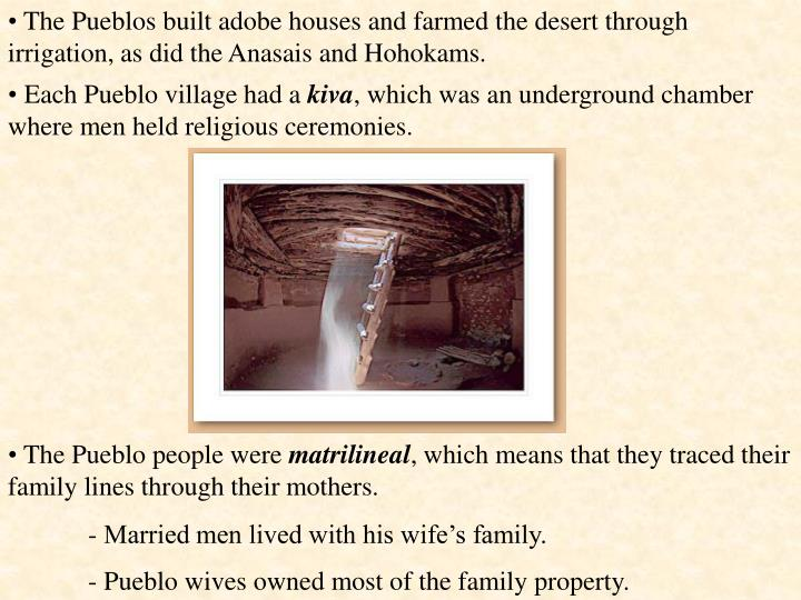 The Pueblos built adobe houses and farmed the desert through irrigation, as did the Anasais and Hohokams.