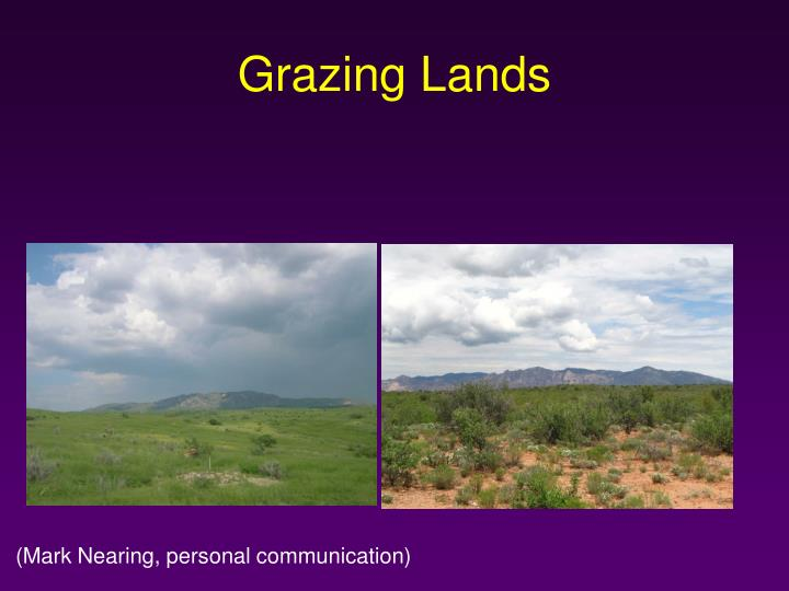 Grazing lands