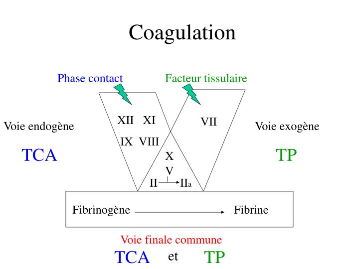Coagulation