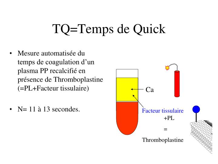 TQ=Temps de Quick