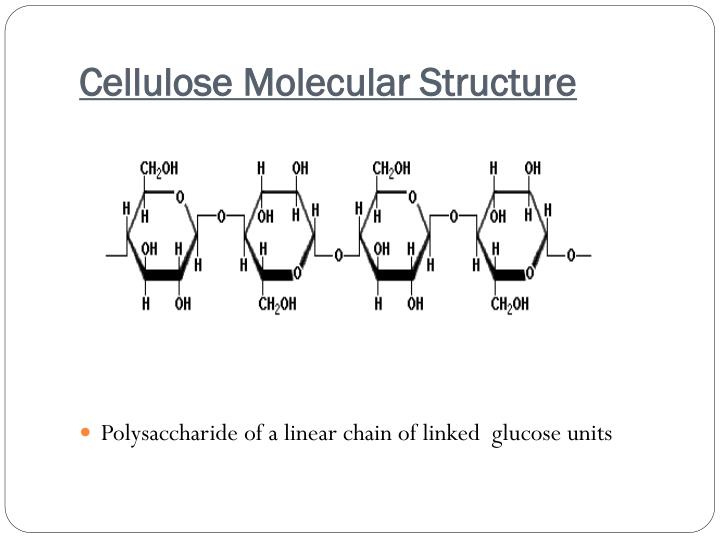 Cellulose Molecular Structure