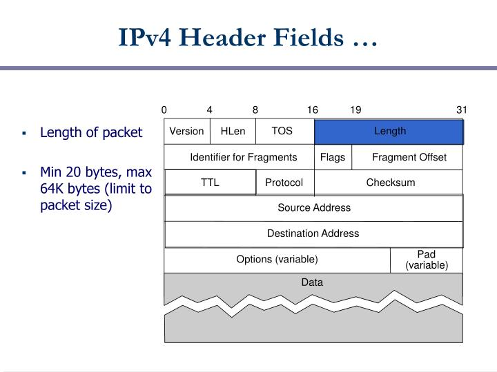 IPv4 Header Fields …