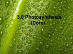 3 8 photosynthesis core
