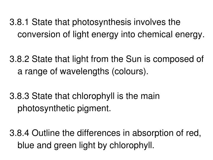 3.8.1 State that photosynthesis involves the conversion of light energy into chemical energy.