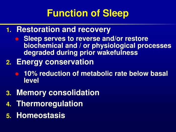 Function of sleep