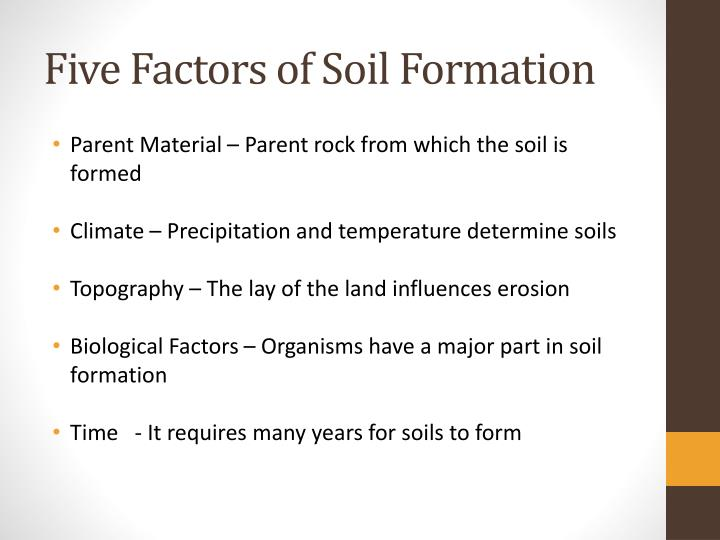 Ppt how does soil form powerpoint presentation id 2407895 for Soil factors