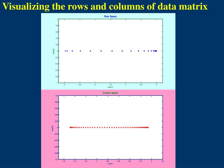 Visualizing the rows and columns of data matrix