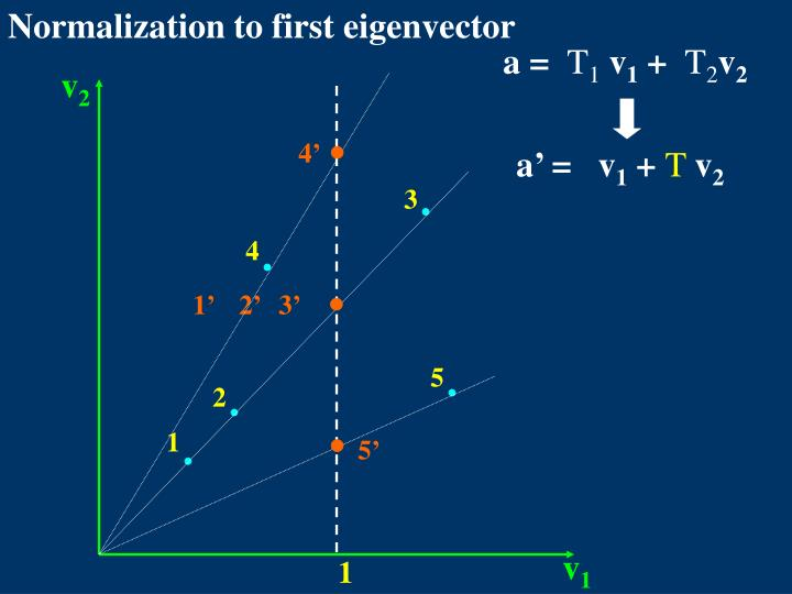 Normalization to first eigenvector