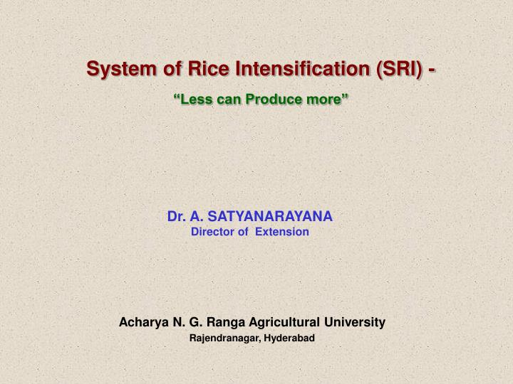 System of Rice Intensification (SRI) -