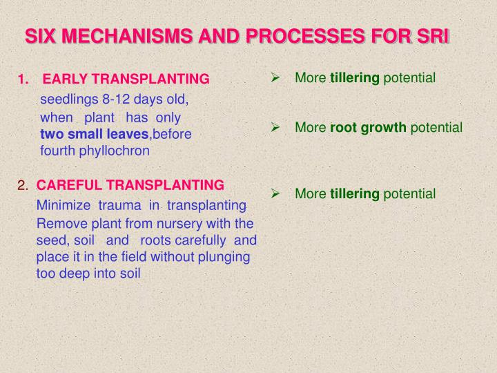 SIX MECHANISMS AND PROCESSES FOR SRI
