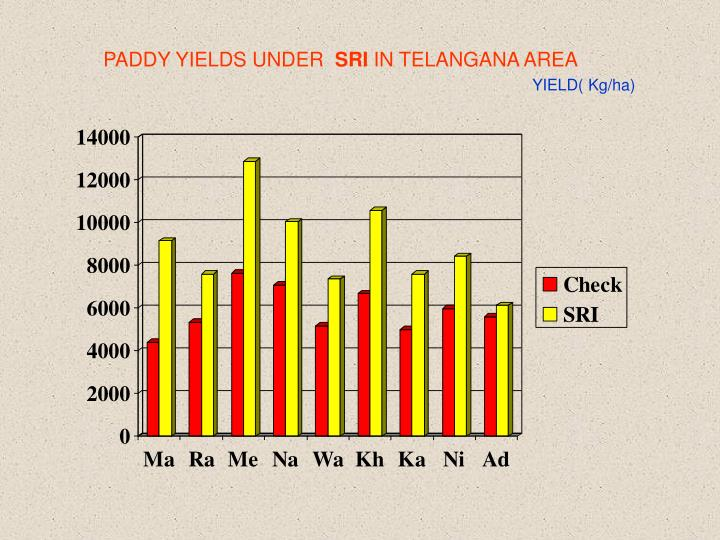 PADDY YIELDS UNDER