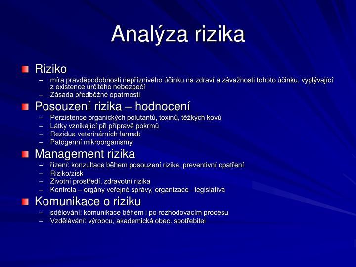 Analýza rizika