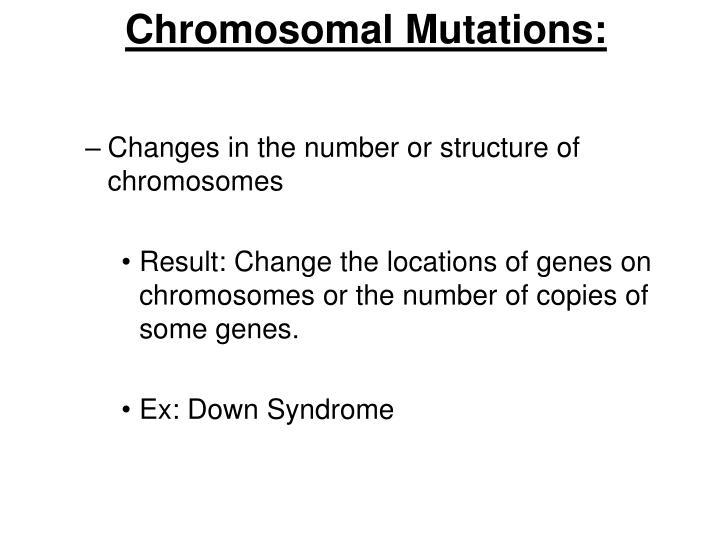 Chromosomal Mutations: