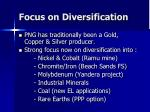 focus on diversification