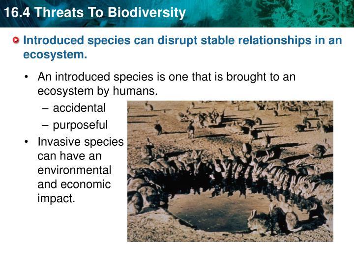 what effect do alien species have on biodiversity