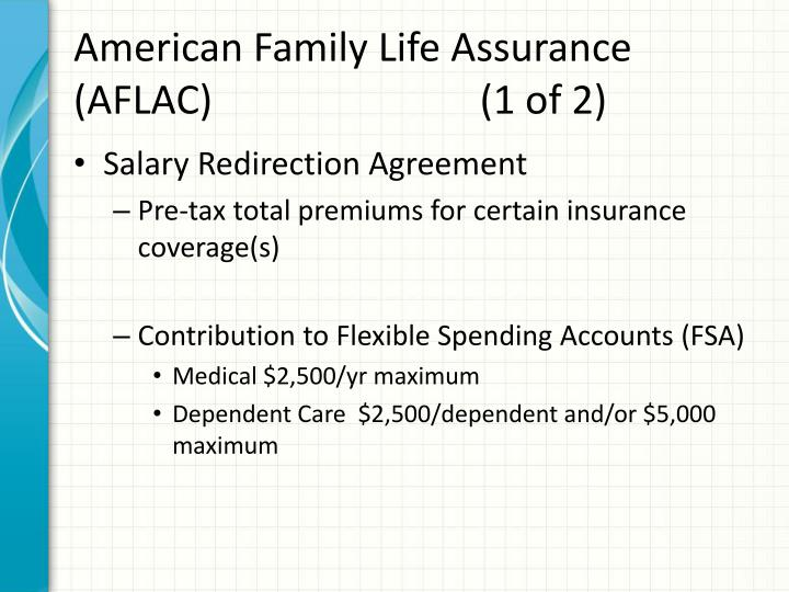 American Family Life Assurance