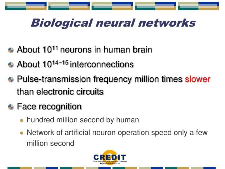 Biological neural networks