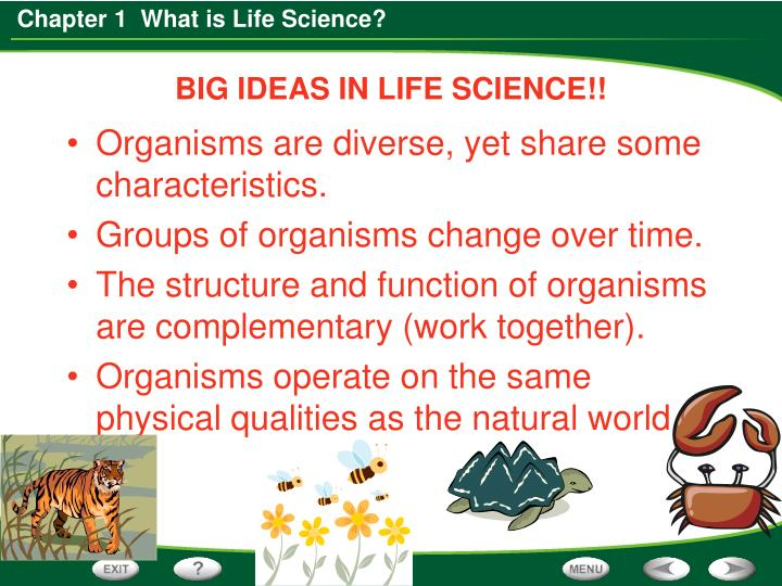 BIG IDEAS IN LIFE SCIENCE!!