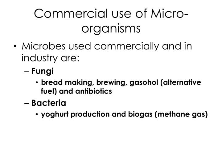Commercial use of Micro-organisms