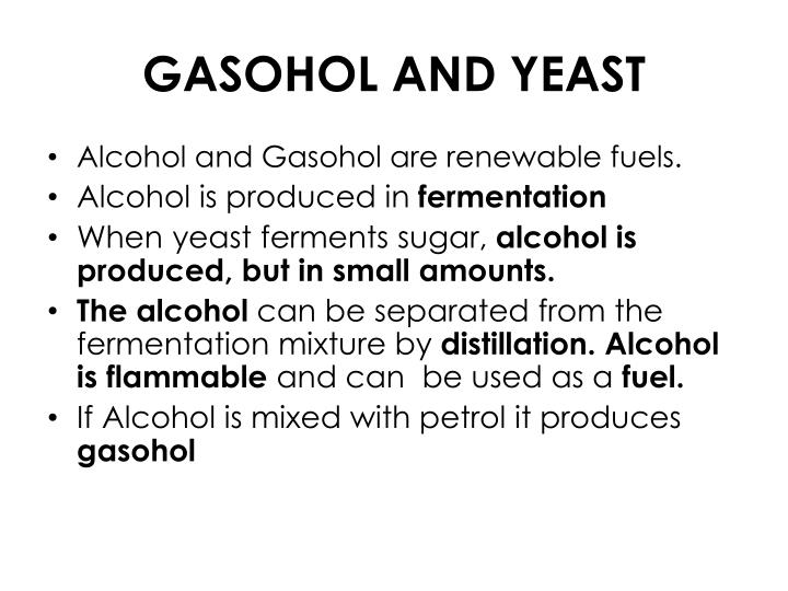 GASOHOL AND YEAST