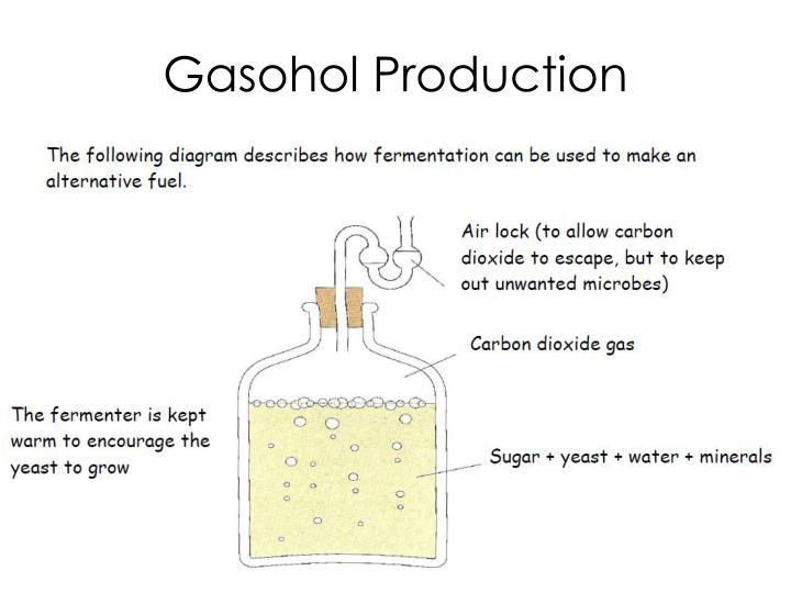 Gasohol Production