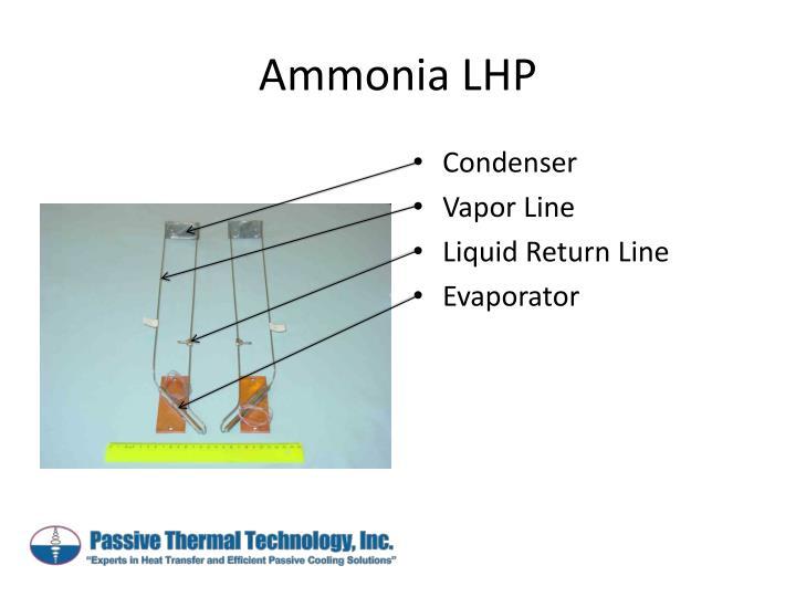 Ammonia LHP