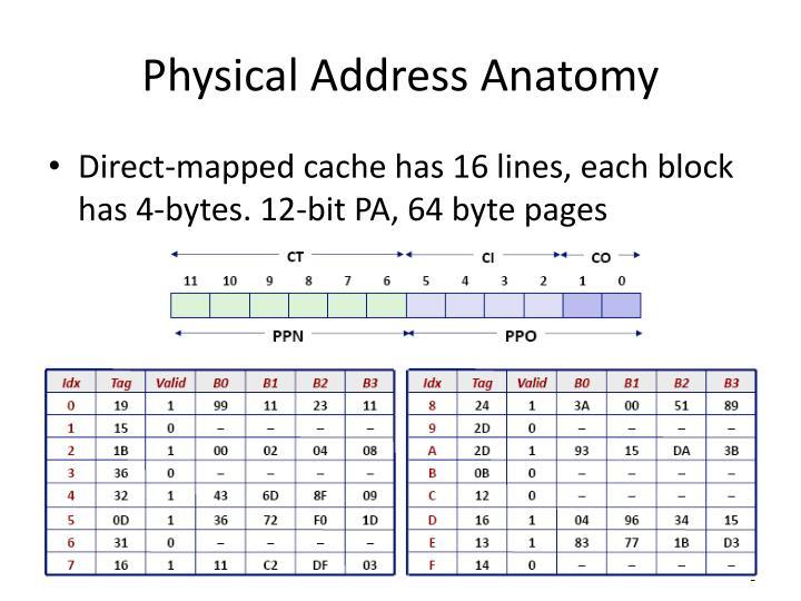 Physical Address Anatomy