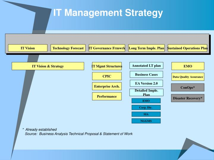 IT Management Strategy