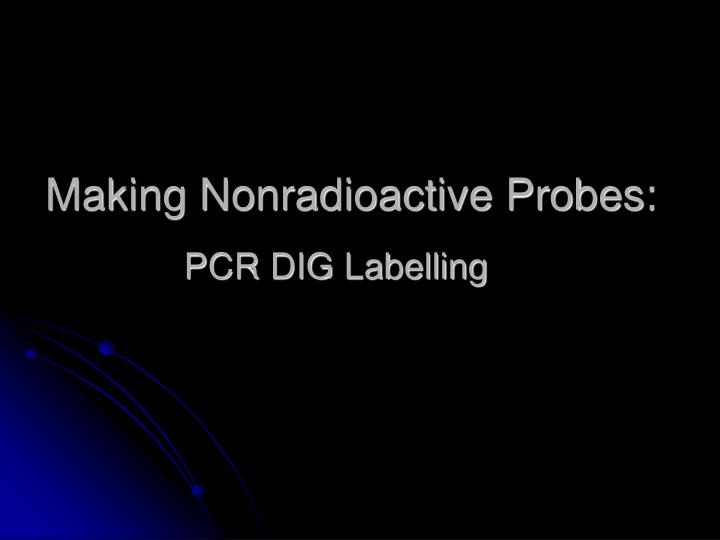 Making nonradioactive probes