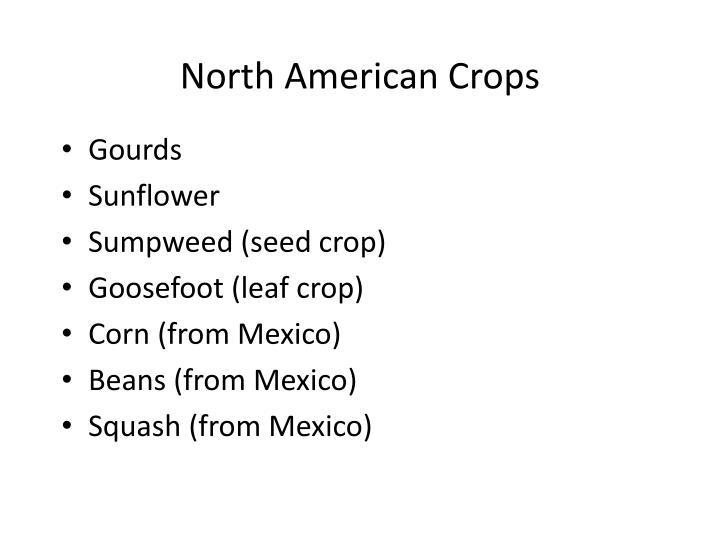 North American Crops