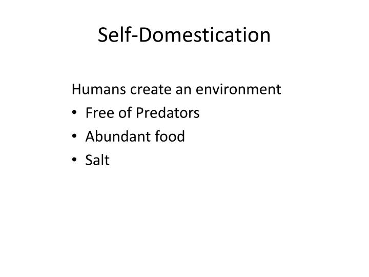 Self-Domestication