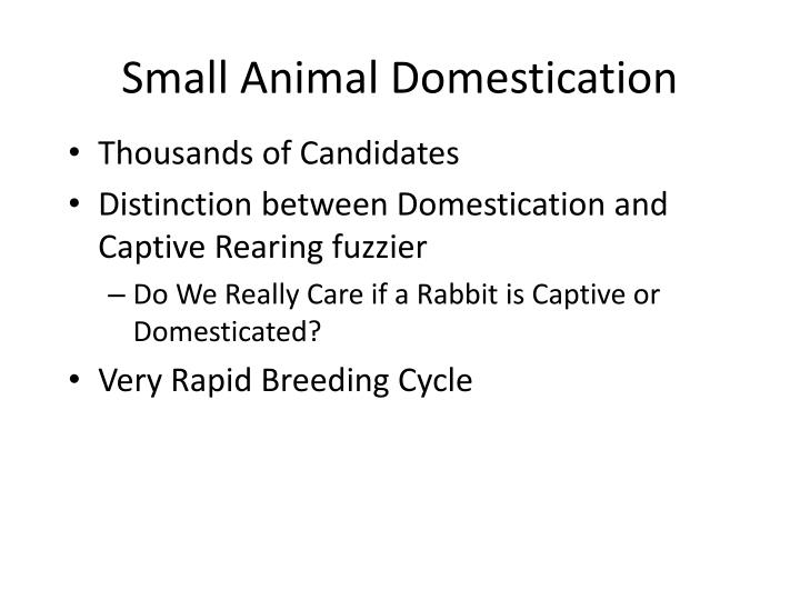 Small Animal Domestication