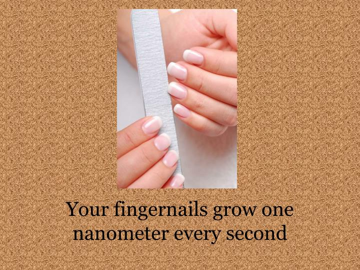 Your fingernails grow one nanometer every second