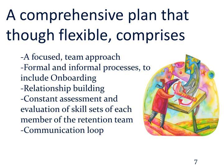 A comprehensive plan that though flexible, comprises