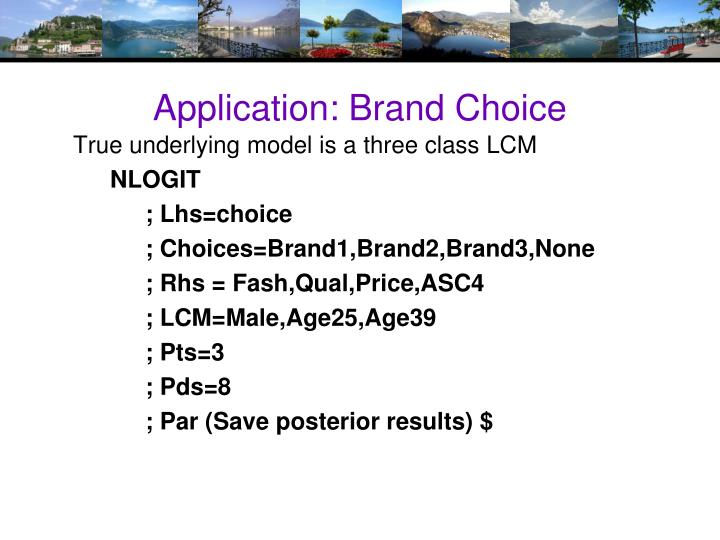 Application: Brand Choice