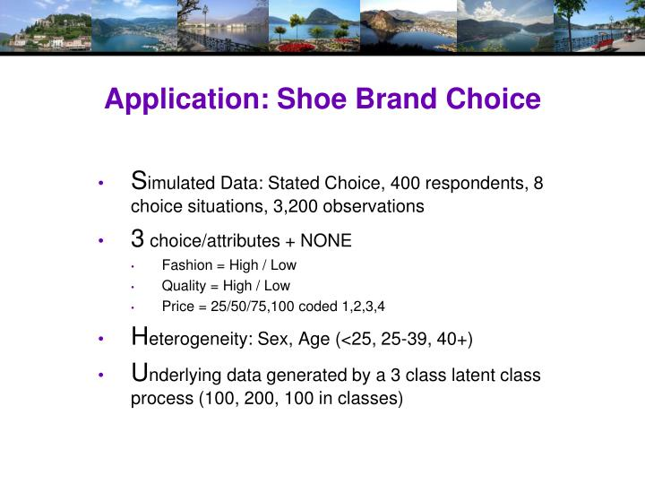 Application: Shoe Brand Choice
