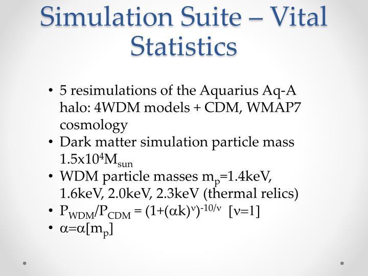 Simulation Suite – Vital Statistics