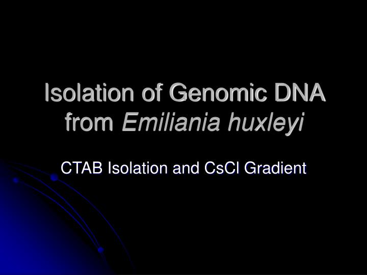 Isolation of genomic dna from emiliania huxleyi
