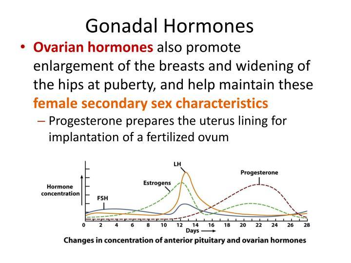 Gonadal Hormones