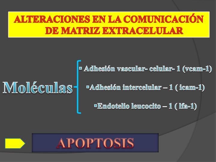 ALTERACIONES EN LA COMUNICACIÓN DE MATRIZ EXTRACELULAR