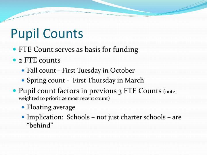 Pupil Counts