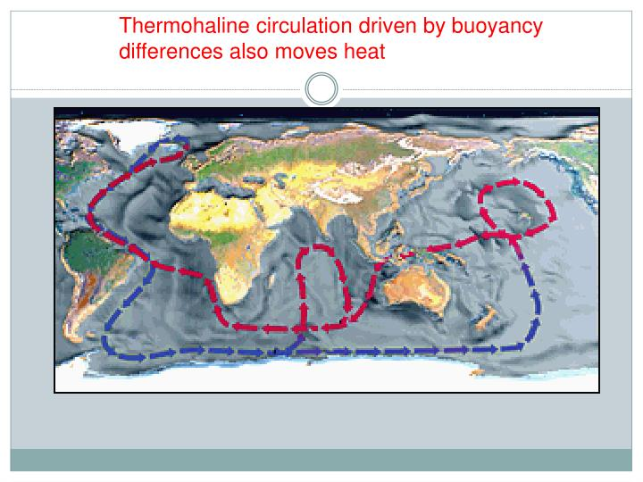 Thermohaline circulation driven by buoyancy