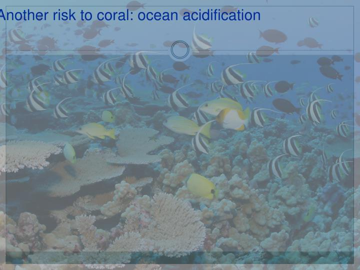 Another risk to coral: ocean acidification