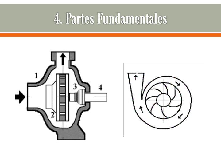 4. Partes Fundamentales