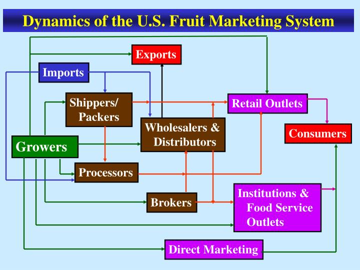 Dynamics of the U.S. Fruit Marketing System