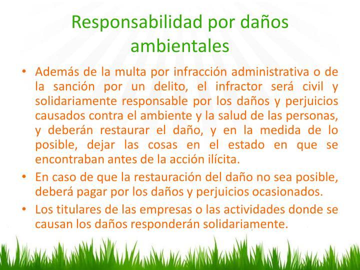 Responsabilidad por daños ambientales