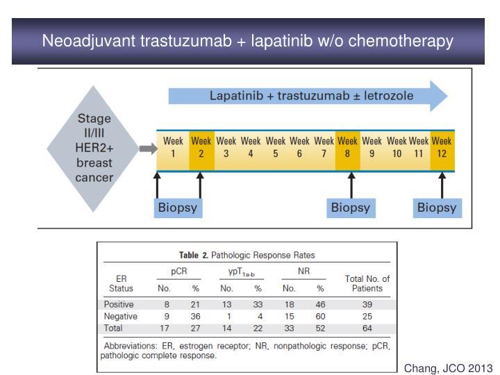 Neoadjuvant trastuzumab + lapatinib w/o chemotherapy