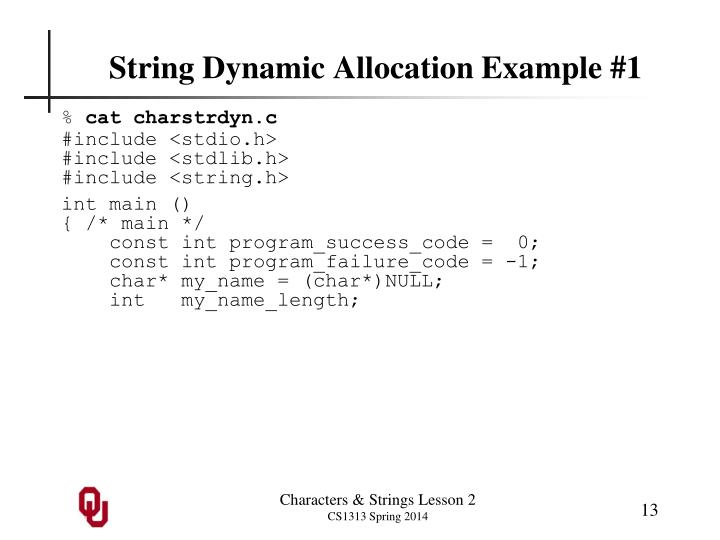 String Dynamic Allocation Example #1